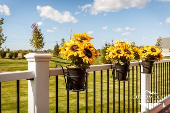 Potted Flowers Hanging from Deck Railing